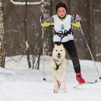 Гек занял первое место в дисциплине «скиджоринг» на первой Юниорской гонке в Москве. 2012 год