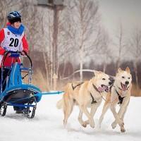 Детско-юношеская гонка в Молжаниново, 2015 год