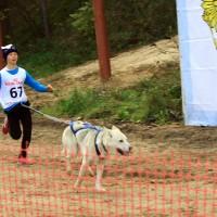 Желтые листья-2016, Таня и Кай впервые на соревнованиях!