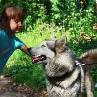 Мы помогаем людям и собакам находить общий язык